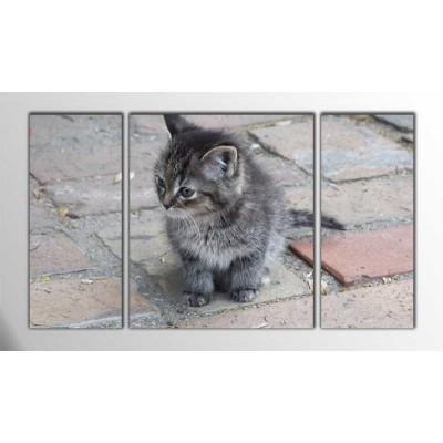 Kediler Parçalı Tablo 120X70Cm