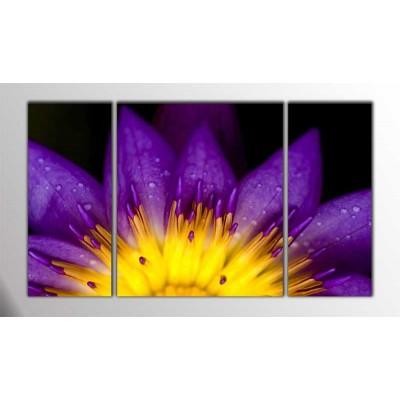 Mor Lotus Parçalı Tablo 120X70Cm