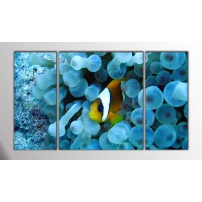 Nemo Parçalı Tablo 120X70Cm