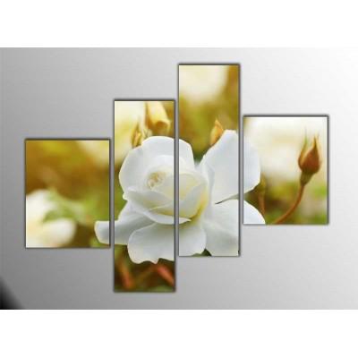 Beyaz Güller Parçalı Tablo 120X95Cm