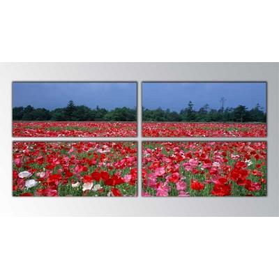 Mixed Poppies Parçalı Tablo 160X70Cm