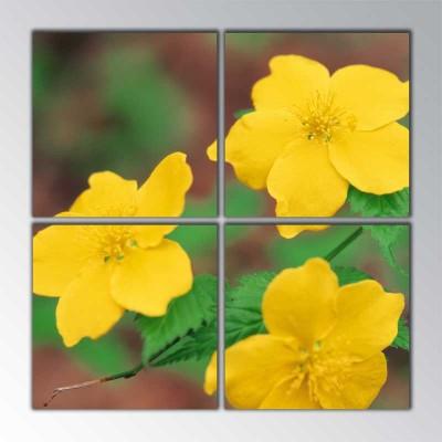 Sarı Çiçek Parçalı Tablo 100 X100Cm