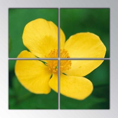 Sarı Çiçek Yakınca Parçalı Tablo 100 X100Cm