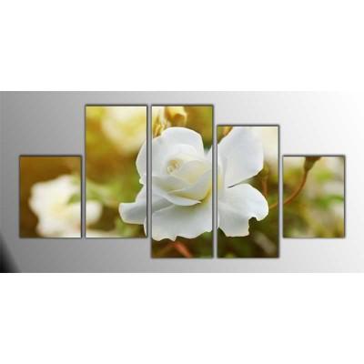 Beyaz Güller Parçalı Tablo 150X75Cm