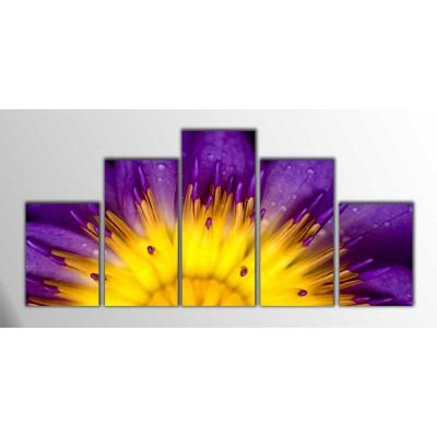 Mor Lotus Parçalı Tablo 125X60Cm