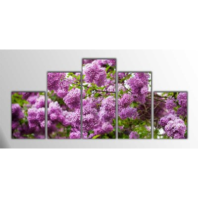 Real Purple Parçalı Tablo 125X60Cm